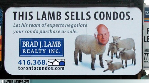 Ad,human,lamb,realtor,weird