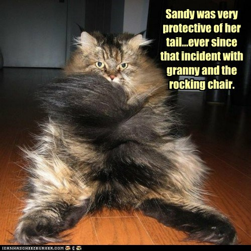 Sandy was very protective of her tail...ever since that incident with granny and the rocking chair.