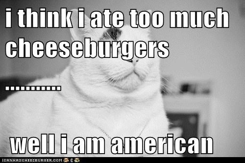 Cheezburger Image 5656302848