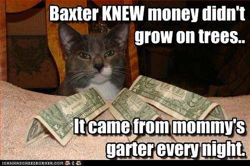 Baxter KNEW money didn't grow on trees.. It came from mommy's garter every night. Baxter KNEW money didn't grow on trees.. It came from mommy's garter every night.