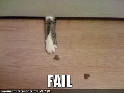 FAIL lolcats paws - 565644032