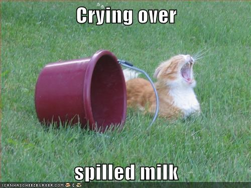 caption captioned cat crying milk over reason spilled tabby - 5656690432