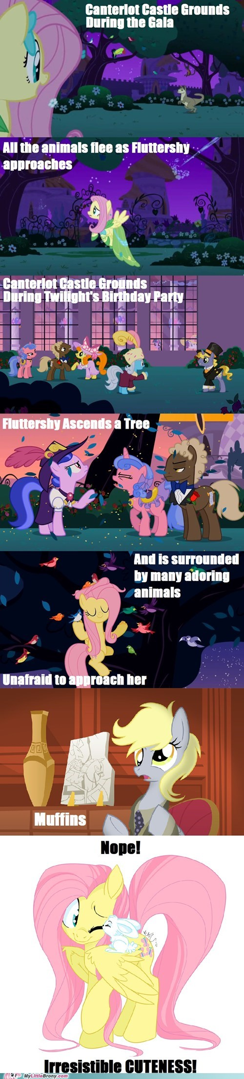 animals best pony comic comics fluttershy muffins - 5657207808