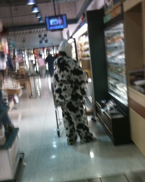 asking for it,cow costume,shopping in the cheese section