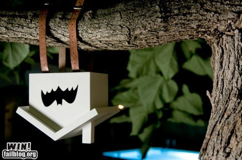 bat,batman,birdhouse,design,house