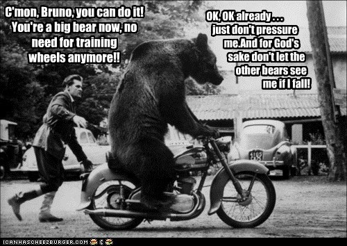 C'mon, Bruno, you can do it! You're a big bear now, no need for training wheels anymore!! OK, OK already . . . just don't pressure me.And for God's sake don't let the other bears see me if I fall!