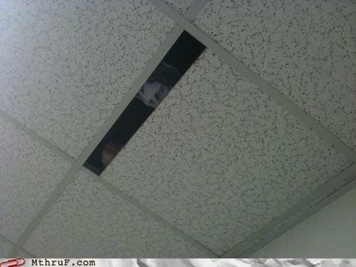 ceiling tile creepy Staring watching me - 5659629056