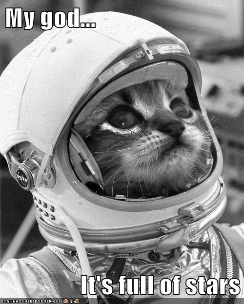 astronaut,astrophysics,cat,I Can Has Cheezburger,outer space,science,space,space helmet,stars