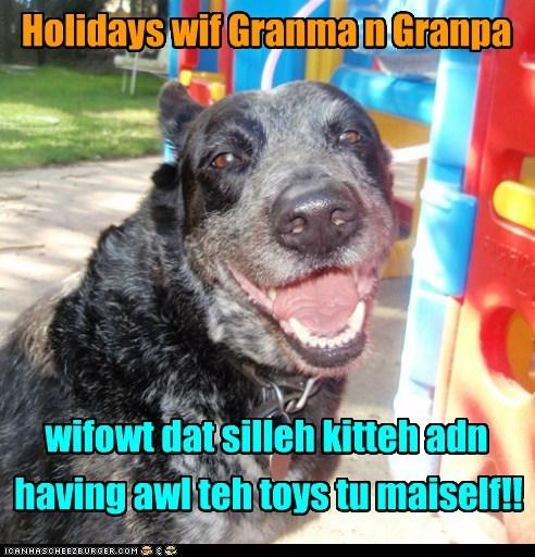Holidays wif Granma n Granpa wifowt dat silleh kitteh adn having awl teh toys tu maiself!!