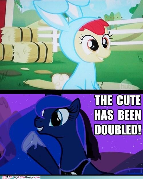 doubled huzzah luna meme - 5662091264