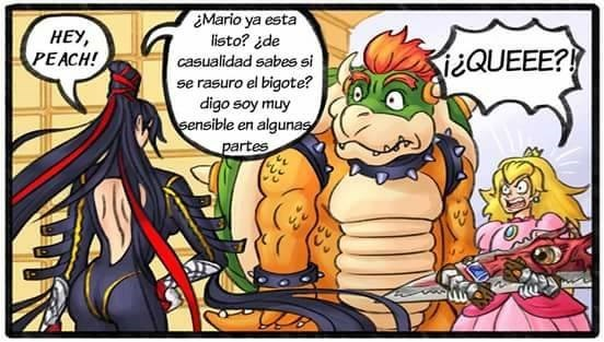 bowser conquista peach