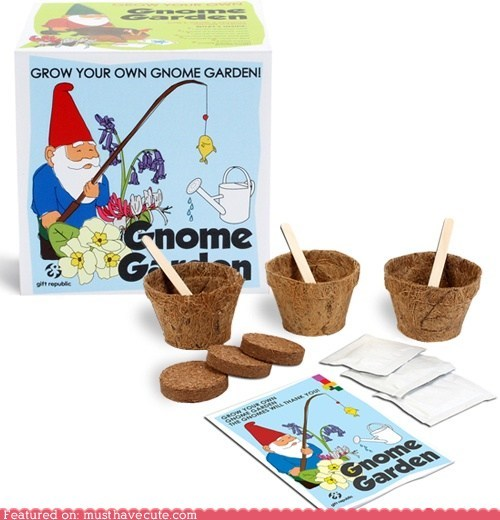 DIY,flowers,gardening,gnome,kit,starter