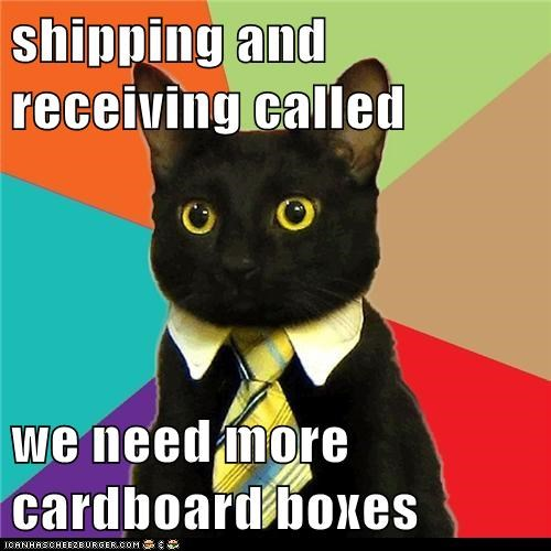 boxes,business,Business Cat,cardboard box,Cats,offices,shipping,work,working
