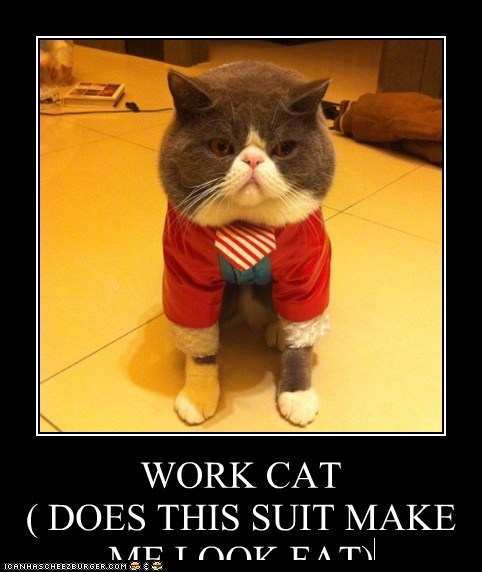 WORK CAT ( DOES THIS SUIT MAKE ME LOOK FAT)