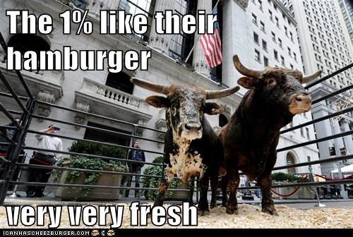 Cheezburger Image 5666174976