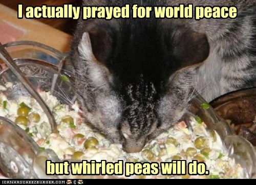 animals,cat,eating,good,I Can Has Cheezburger,peas,whirled peas,world peace