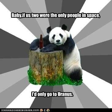 anus flirting gross jokes panda Pickup Line Panda pickup lines puns space uranus - 5667247616