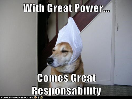 animals,dogs,i has a hotdog,responsibility,superhero