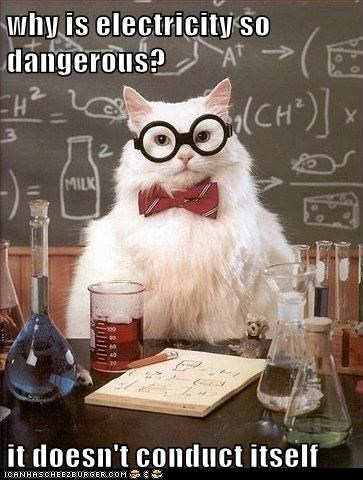 cat,chemistry cat,conducts,dangerous,electricity