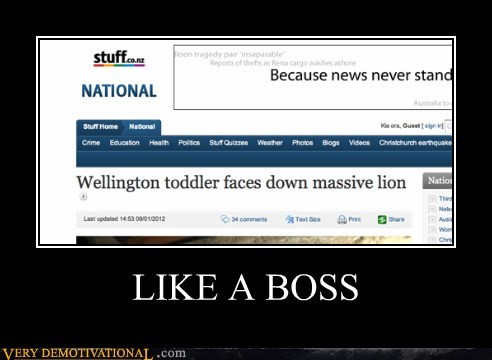 kid lion news Pure Awesome toddler wtf