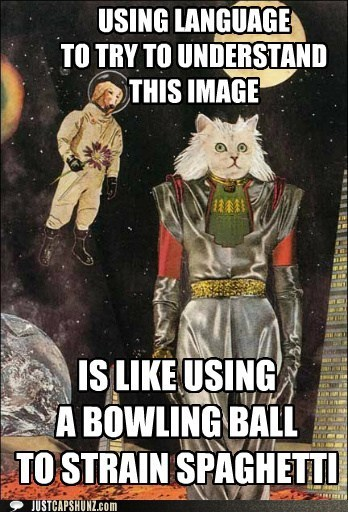 bowling ball caption contest cat confusing dogs idgi intergalactic language mixed media outer space spaghetti whats-going-on-here whoa wtf