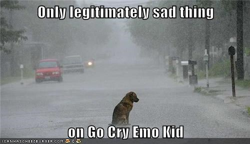 Only legitimately sad thing on Go Cry Emo Kid