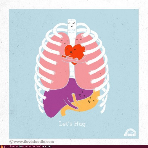 anatomy,best of week,body,hug,lung,organs,wtf