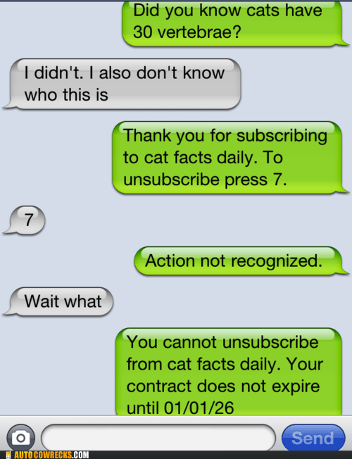 cat facts,Hall of Fame,troll,trolling,unsubscribe,vertebrae