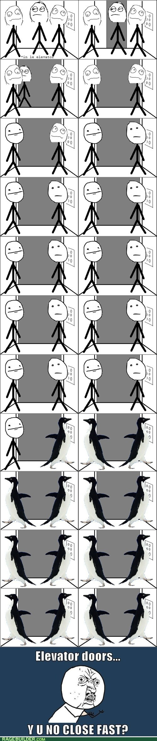 elevator poker face Rage Comics socially awkward penguin - 5671771904