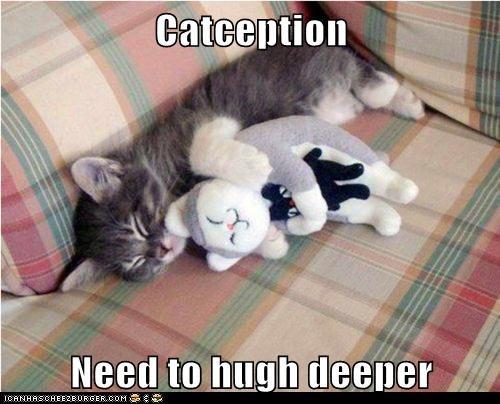 Catception  Need to hugh deeper