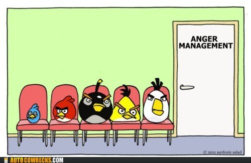 anger management angry birds AutocoWrecks cartoons comic g rated mobile phones therapy