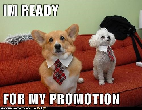 IM READY FOR MY PROMOTION