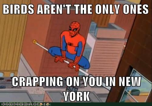 birds crapping Spider-Man Super-Lols - 5673638656