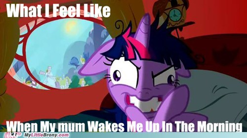 in the morning IRL ponies twilight sparkle what i feel like - 5674358528