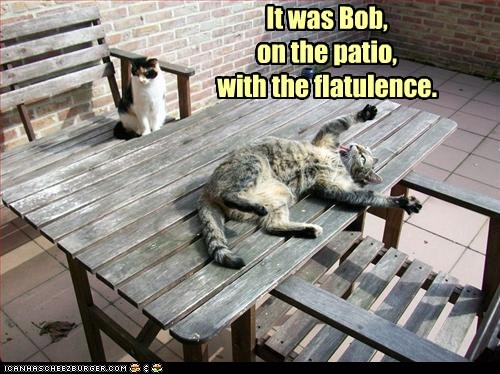 caption,captioned,cat,Cats,clue,flatulence,patio,place,sbd,solution,weapon,who