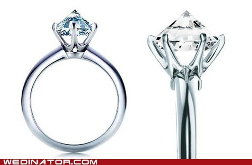 engagement rings funny wedding photos rings sharp wedding rings - 5675549696