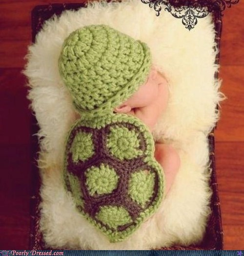 Babies baby clothes fashion g rated Hall of Fame i like turtles poorly dressed - 5675576320