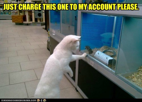 JUST CHARGE THIS ONE TO MY ACCOUNT PLEASE.
