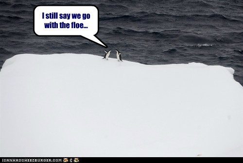 I still say we go with the floe...