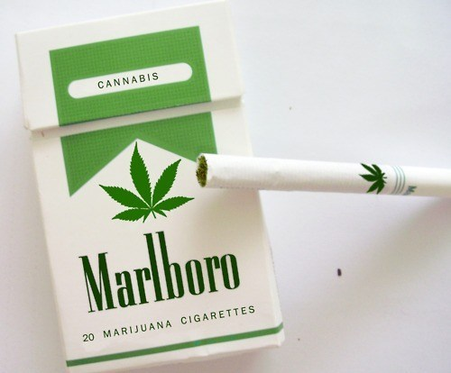 For Science Legalize It - 5676514816