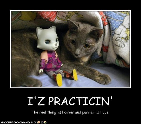 I'Z PRACTICIN' The real thing is hairier and purrier...I hope.