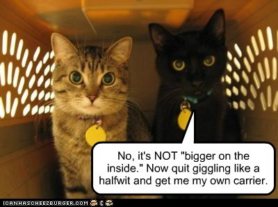 "No, it's NOT ""bigger on the inside."" Now quit giggling like a halfwit and get me my own carrier."