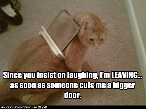 bigger,caption,captioned,cat,cat door,condition,cut,door,insist,laughing,leaving,stuck
