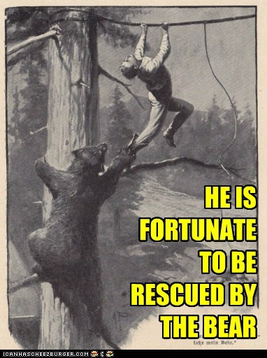 HE IS FORTUNATE TO BE RESCUED BY THE BEAR