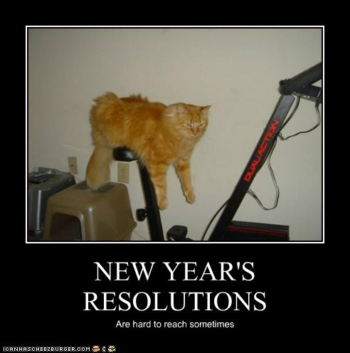 caption captioned cat FAIL hard new years resolutions pun Reach resolution sometimes working out - 5678987776