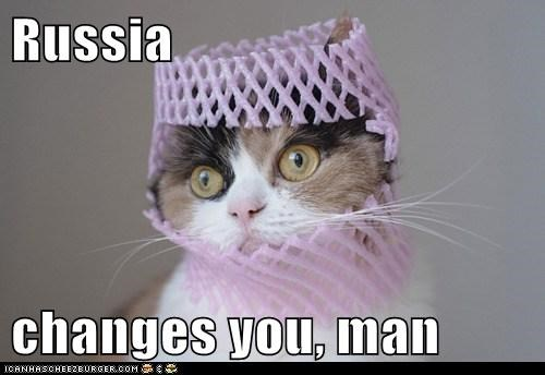 animals cat changed man I Can Has Cheezburger russia Travel traveler whoa wunderlust - 5679164672