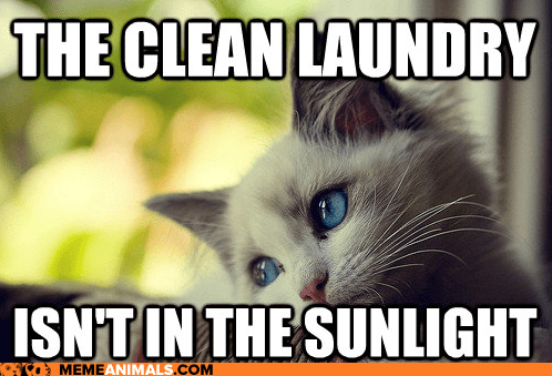 caption,captioned,Cats,first world,first world cat problems,First World Problems,laundry,Memes,Sad,sun,sunlight