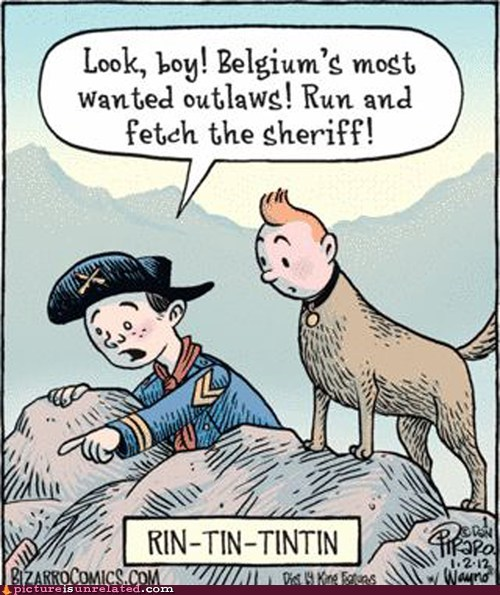cartoons,rin tin,tin tin