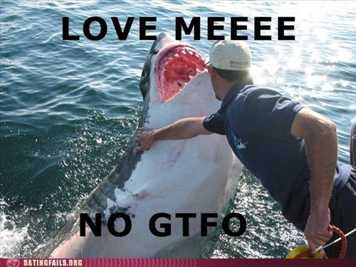 aquatic love dating fails g rated Hall of Fame jaws love meeeee sharks