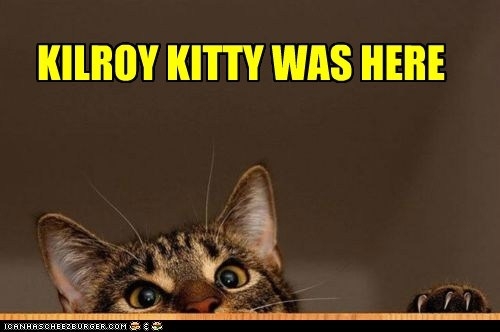 caption captioned cat here kilroy kilroy was here - 5681633024